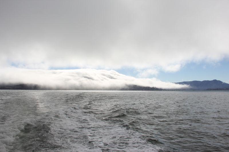 Fog Fog Fog Fog